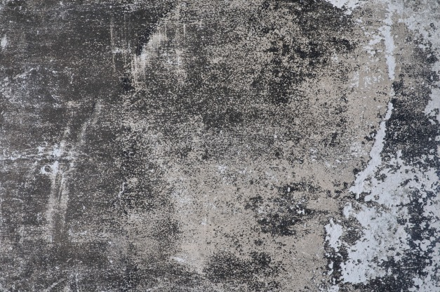 Free Texture VII